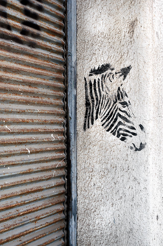 urban camouflage (II)