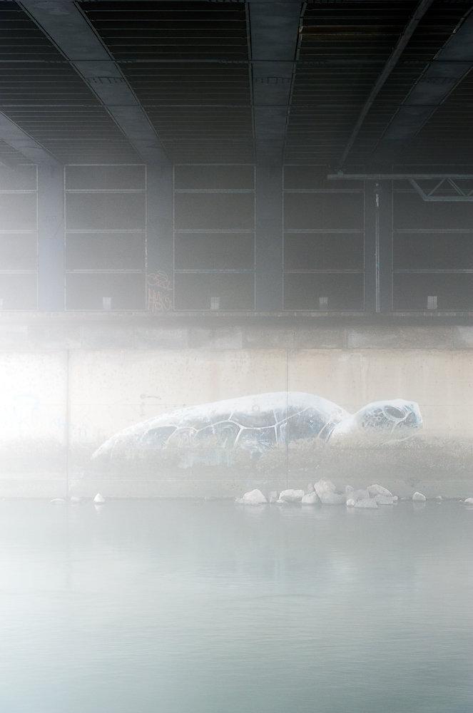 urban habitat (II)