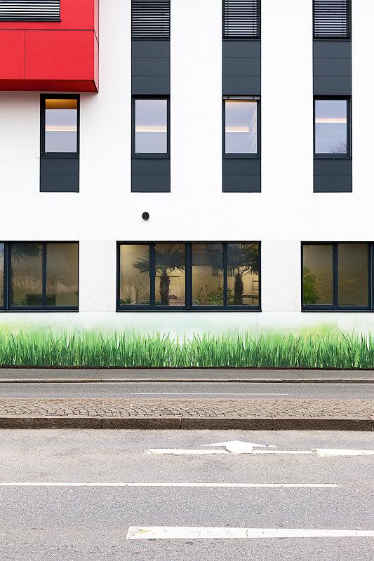 urban meadows (II)